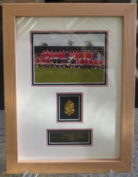 Medal in Oak frame