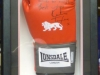 Framed Boxing Glove 2